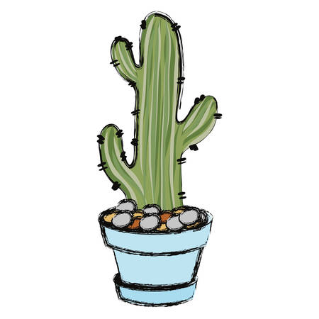 Cartoon cactus in a pot on white background, vector illustration. Illustration