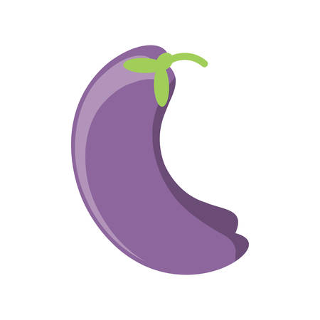 eggplant icon over white background colorful design vector illustration Illustration