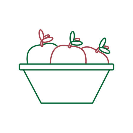 A bowl with apples icon over white background colorful design vector illustration