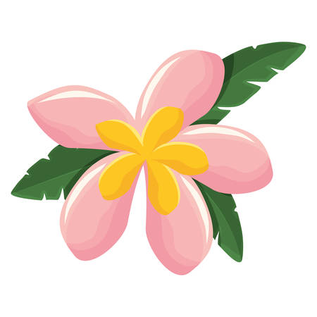 A flower with petals pink and yellow vector illustration Illustration