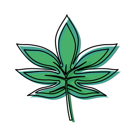 colored palmate leaf  over white background  vector illustration Ilustração