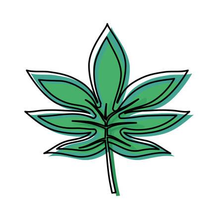 colored palmate leaf  over white background  vector illustration Illustration