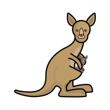 Colorful mother and baby kangaroo over white background vector illustration