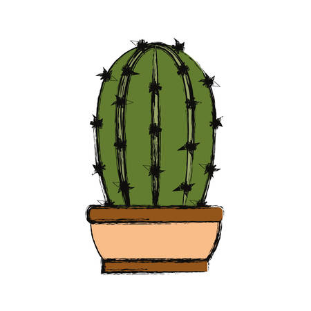 Cactus in potted illustration.