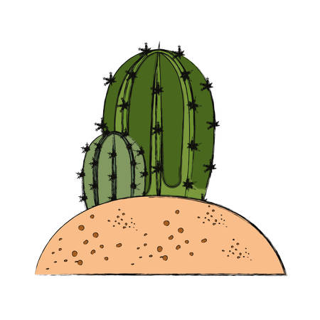 cactus in soil  vector illustration