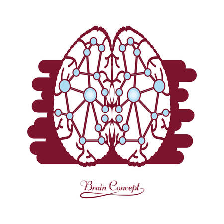 human brain with dots connection over white background colorful design vector illustration