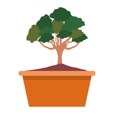 Bonsai tree on a pot in colorful cartoon illustration.