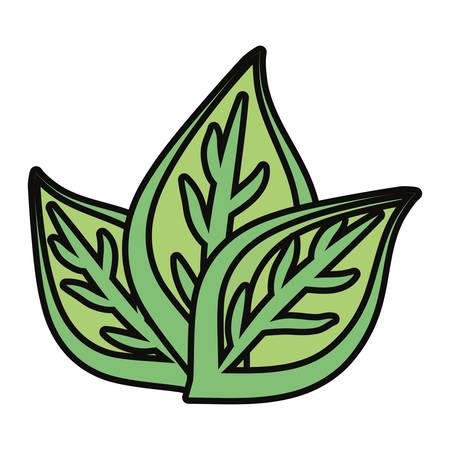 Leaves eco symbol cartoon vector illustration graphic icon