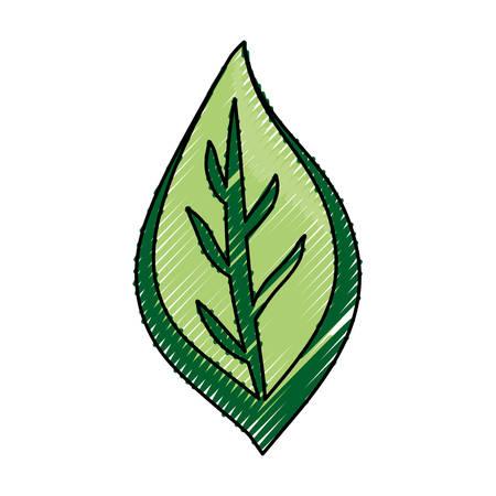 Leaf eco symbol cartoon
