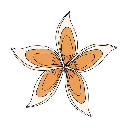 Beautiful flower symbol icon vector illustration graphic design. Illustration