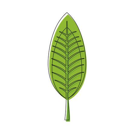 Leaf eco symbol icon vector illustration graphic design Illustration