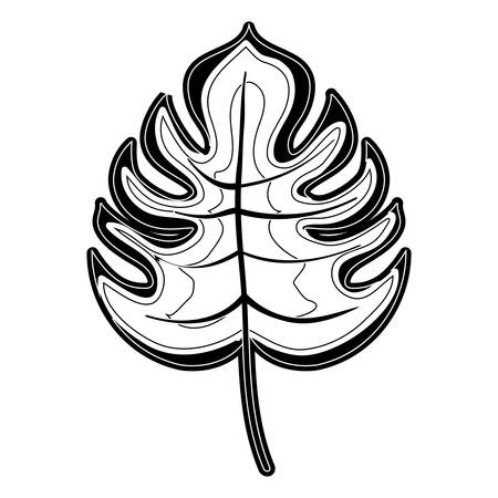 Leaf eco symbol icon vector illustration graphic design Illustration