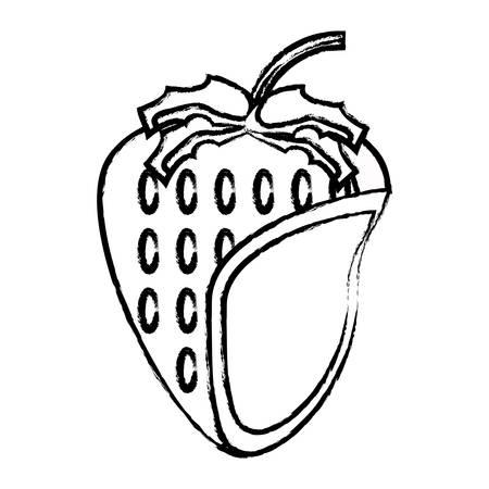 Strawberry fruit icon over white background vector illustration. Illustration