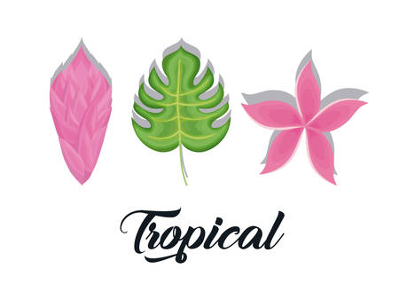 set of summer and trendy tropical leaves