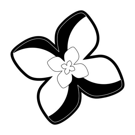 A flat line white and black flower of four petals with white center o vector illustration