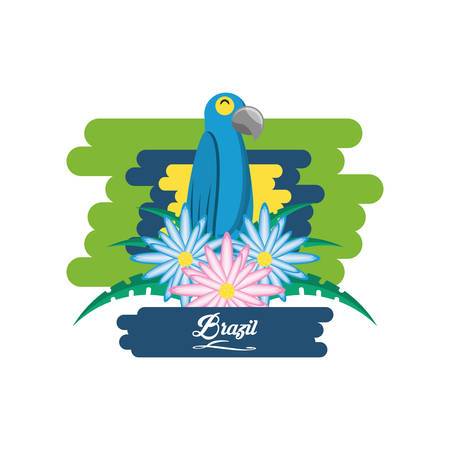 Brazil design with macaw bird and beautiful flowers over white background colorful design vector illustration