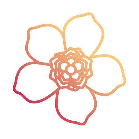 Flat line gradient orange and pink flower design of five petals with central flower vector illustration