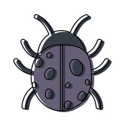 Ladybug icon over white background, colorful design. vector illustration Illustration