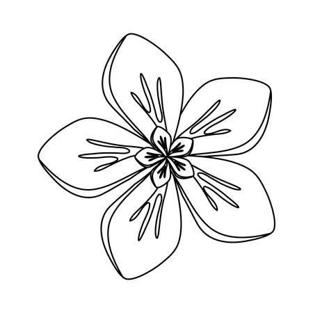 Flat line uncolored five petals flower over white background vector illustration Vettoriali