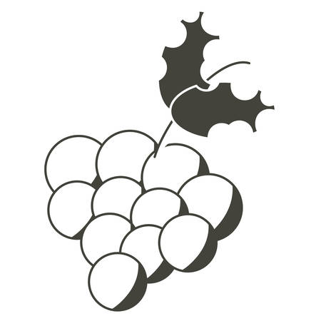 bunch of grapes icon Vector illustration.