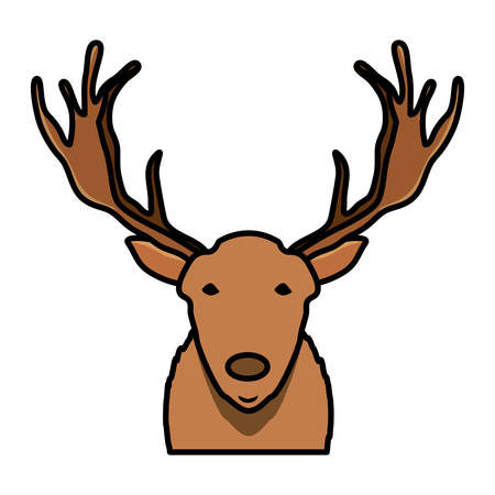 Cartoon deer with horns over white background, colorful design. vector illustration
