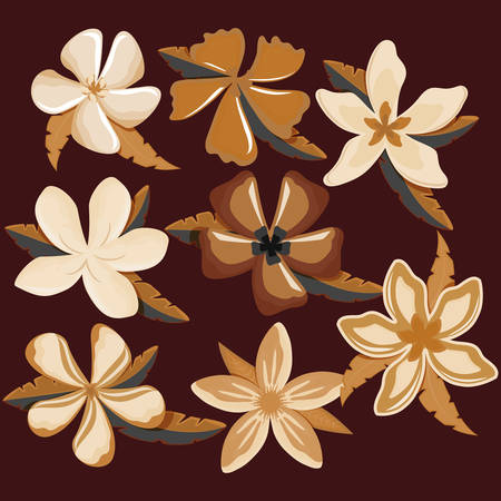 plumeria flower and tropical leaves over brown background, colorful design vector illustration