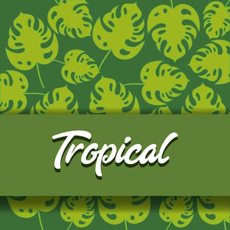Tropical leaves design with leaf pattern illustration.