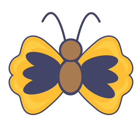 cute butterfly icon over white background, colorful design vector illustration