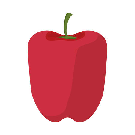 colorful red pepper over white background vector illustration