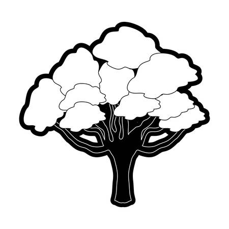 Monocromatic black and white elm tree vector illustration