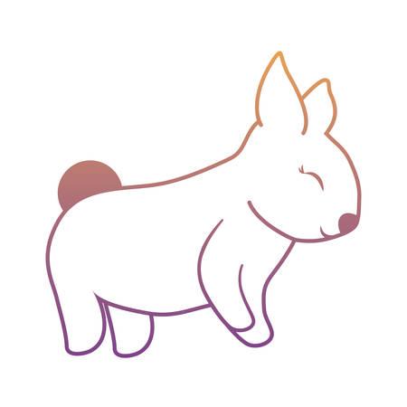 Rabbit animal icon isolated on white background