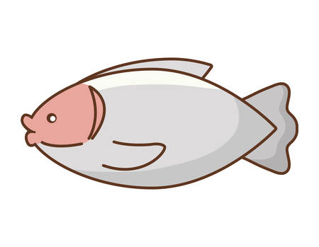 A fish icon over white background, colorful design. vector illustration Banco de Imagens - 96587919