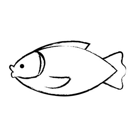 Sketch of fish icon over white background, vector illustration. Illustration
