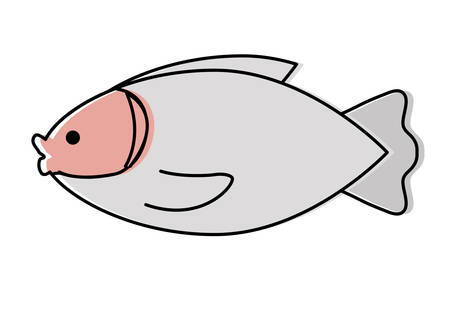 fish icon over white background, colorful design. vector illustration