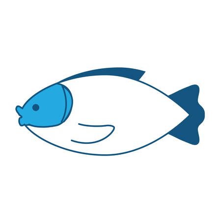 fish icon over white background, vector illustration