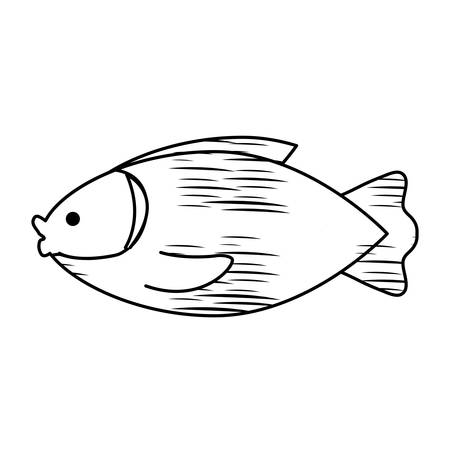sketch of fish icon over white background, vector illustration