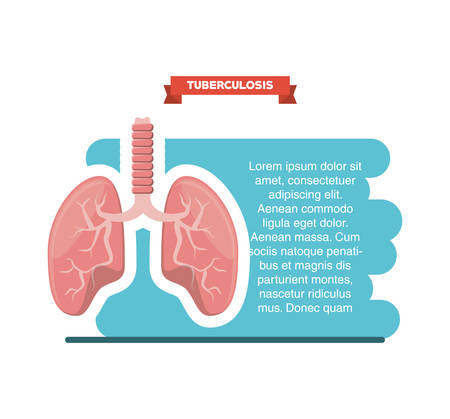 Tuberculosis infographic design with lungs icon over white background, colorful design vector illustration