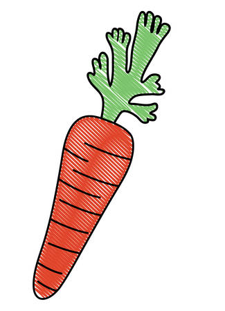 Carrot icon over white background, colorful design. vector illustration