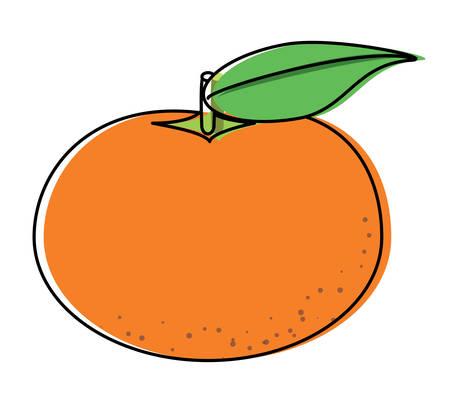 tangerine segments icon over white background, colorful design. vector illustration