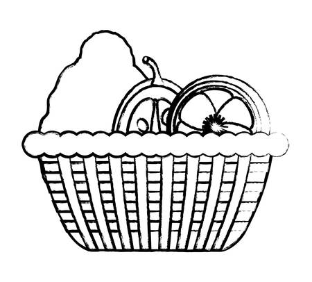 Sketch of basket with healthy fruits icon over white background, vector illustration