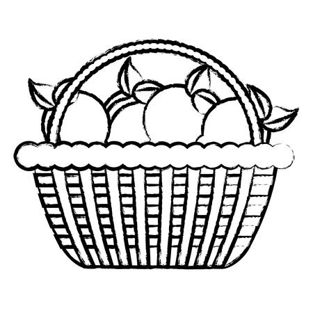 Sketch of basket with lemons icon over white background, vector illustration