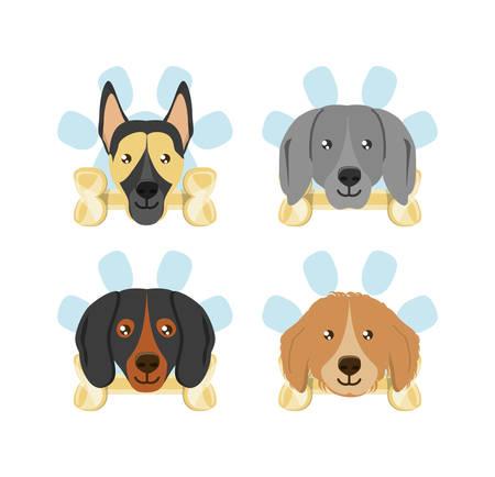 Insieme dell'icona dei cani con le ossa sopra fondo bianco, illustrazione variopinta di vettore di progettazione
