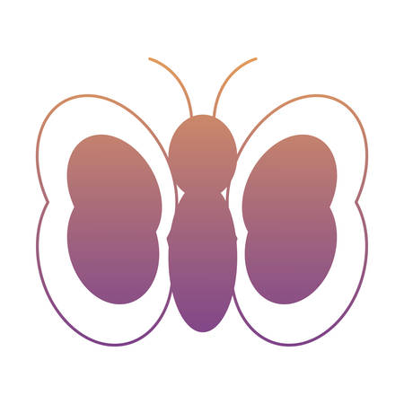 butterfly icon over white background, colorful design. vector illustration