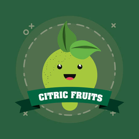 emblem of citric fruits design with lemon icon over green background, colorful design. vector illustration