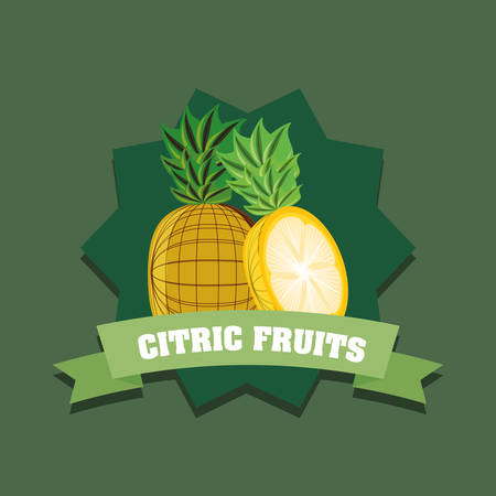 citric fruits design with decorative frame and ribbon over green background, colorful design. vector illustration