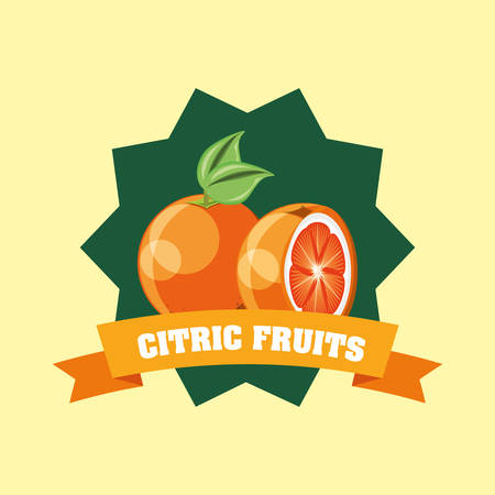 citric fruits design with decorative frame and ribbon with orange fruit over yellow  background, colorful design. vector illustration