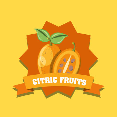 citric fruits design with decorative frame and ribbon with tree tomato over yellow background, colorful design. vector illustration