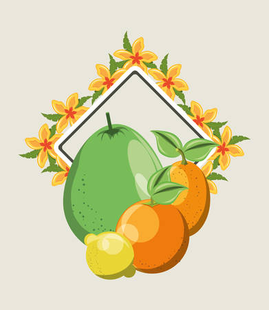 citric fruits and decorative frame with tropical flowers over white background, colorful design. vector illustration