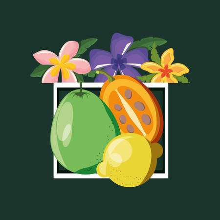decorative frame with tropical flowers and citric fruits over green background, colorful design. vector illustration