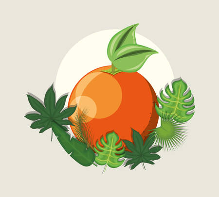 tropical leaves with orange fruit and decorative tropical leaves over gray background, colorful design. vector illustration Illustration
